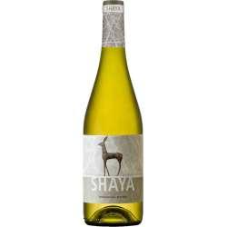 Shaya Verdejo 2016