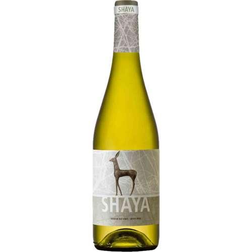 Shaya Verdejo 2018