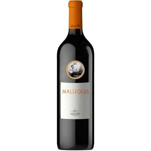 Malleolus Magnum 2015