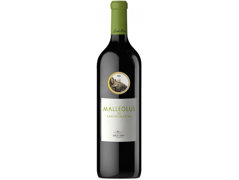 Malleolus de Sanchomartín 2015