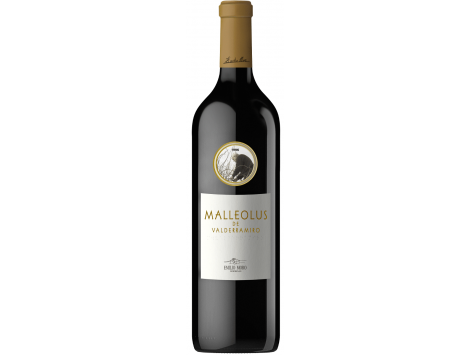 Malleolus de Valderramiro 2015